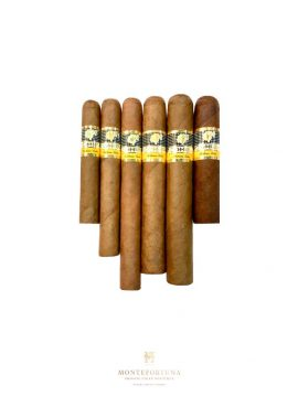 Cohiba Basic Sampler