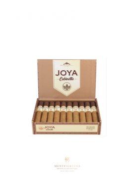 Buy Joya de Nicaragua Cabinetta Robustos